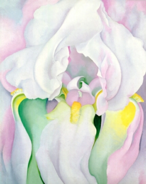 Light Iris by Georgia O'Keeffe, 1924